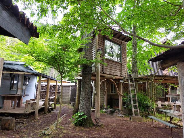 シンボリックなツリーハウスがお出迎え!ソーシャルディスタンスを十分確保できるガーデンが体験会場。小鳥の囀りを聴きながらゆっくりした時間をお過ごし下さい。_ファーマーズヒル(旧かたつむり)