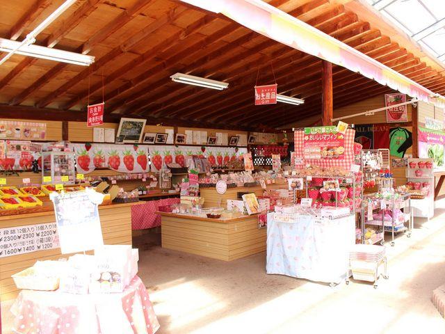 売店には新鮮いちごからオリジナルの土産品等お菓子・雑貨・野菜など品ぞろえ豊富_磯山観光いちご園
