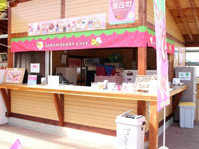 スイーツコーナーのカウンターです。イチゴののれんが目印!_磯山観光いちご園