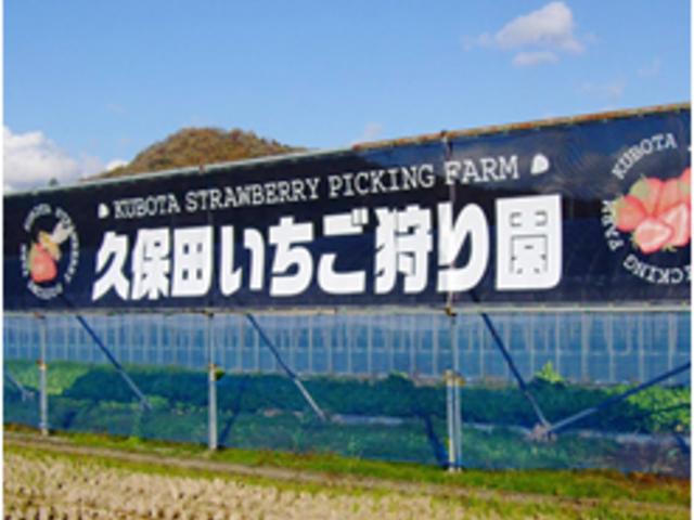 久保田いちご狩り園
