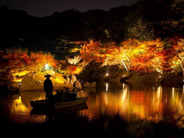 栗林夜の紅葉_栗林公園