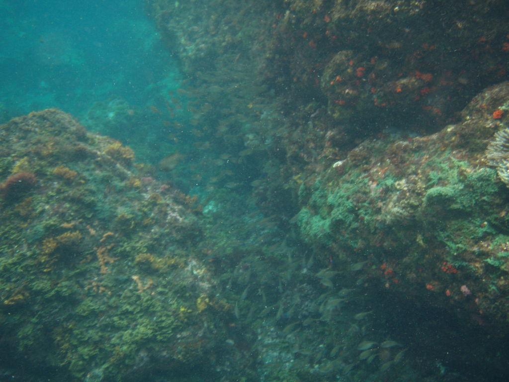 トウシキ遊泳場