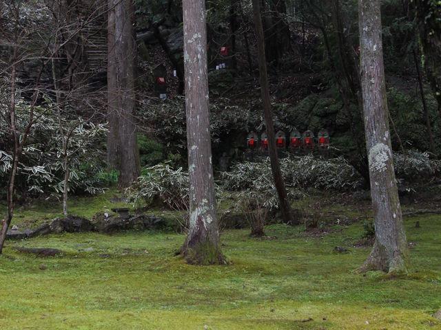 苔で覆われた境内のあちこちにお地蔵さんが立ってます_竹林寺