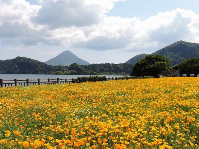 綺麗です_池田湖