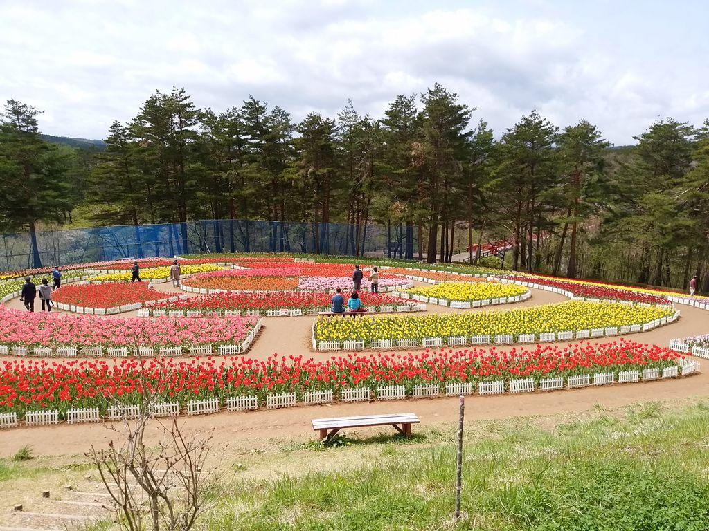 雪谷川ダムフォリストパーク・軽米チューリップ園