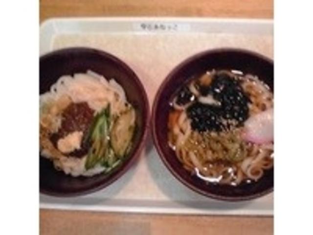 (左):じゃじゃ麺 /(右):雫石葉わさびうどん _道の駅雫石あねっこ