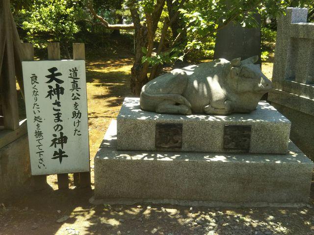 どこそこ悪いところが有りますので全体を撫でてみました。(笑)_日枝神社