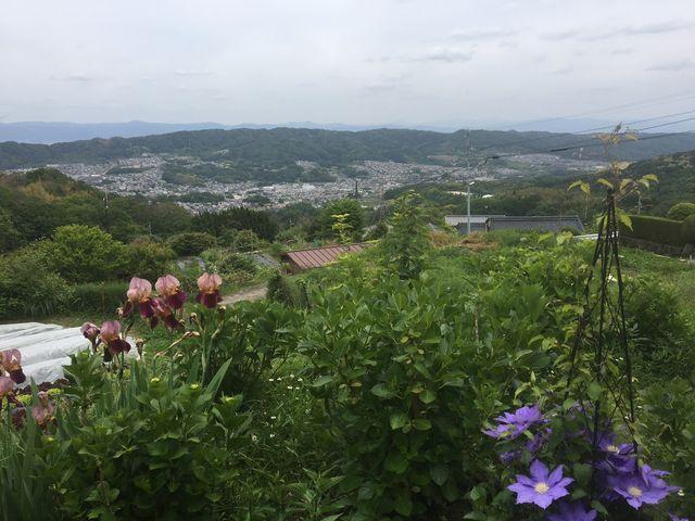 テラス席からの奈良盆地_生駒山