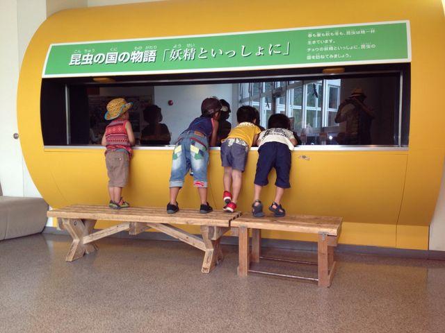 昆虫館_広島市森林公園こんちゅう館
