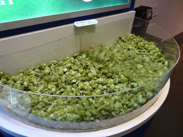 ビール原料のホップ_アサヒビール 名古屋工場