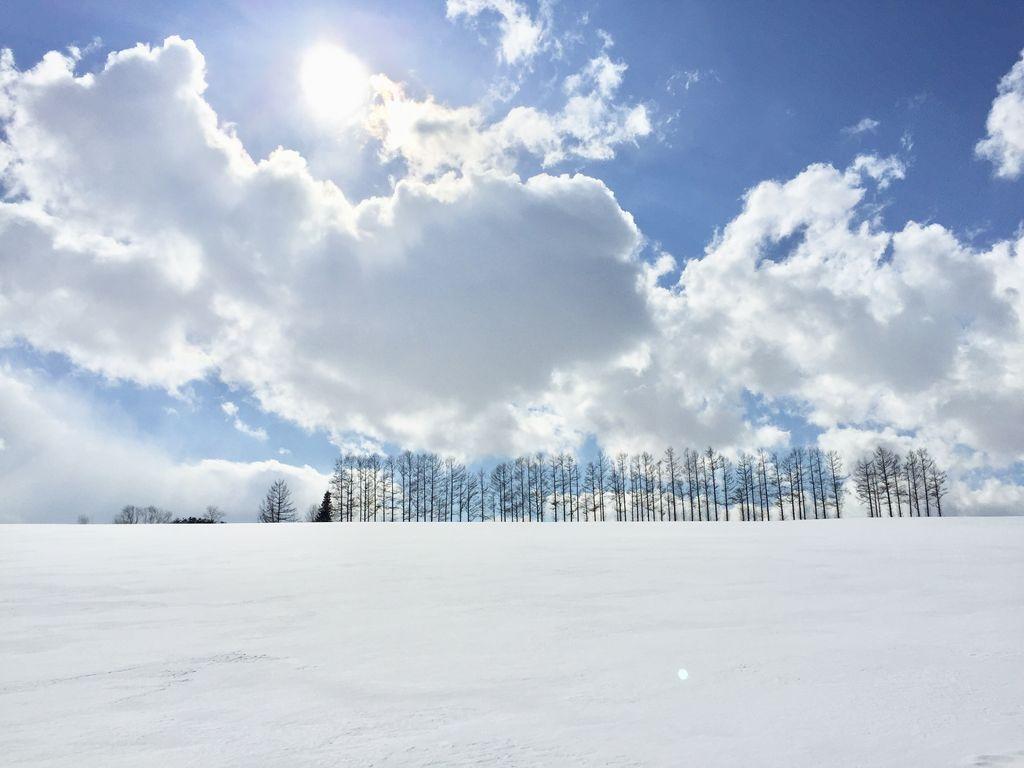 全国 日本の冬絶景22選 美しい雪景色など冬しか見られない感動の絶景