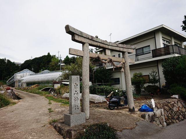 鳥居_白山神社