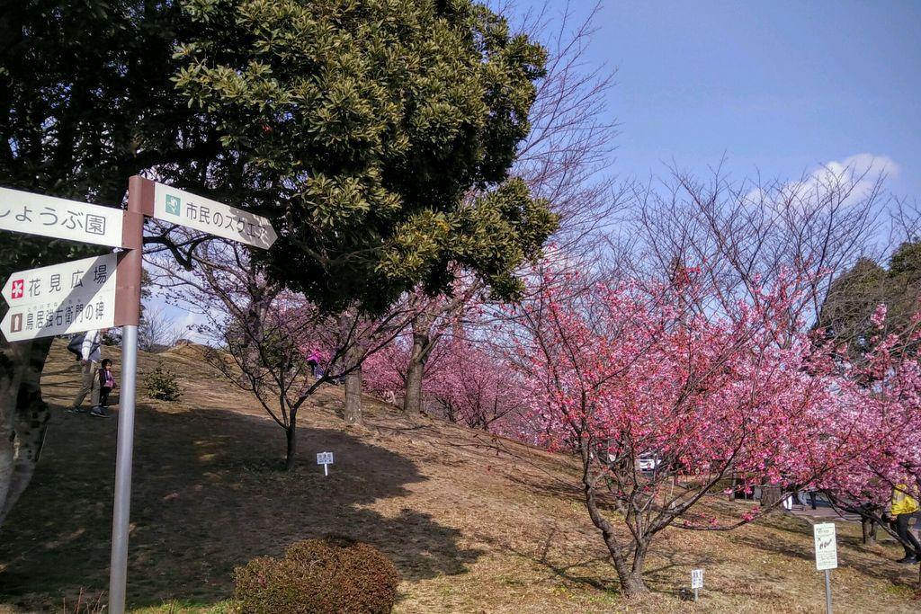 赤塚山公園 【愛知県】