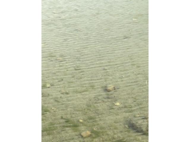 静か_白浜海岸