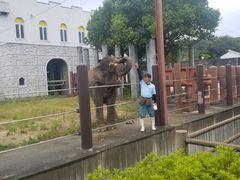動物園 福山 市立