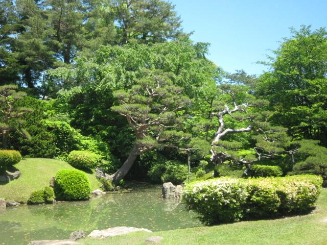 城内の庭園_鶴岡公園