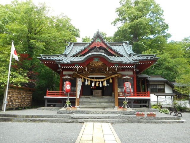 夏でも木陰はひんやり。紅葉シーズンが楽しみ。_諏訪神社