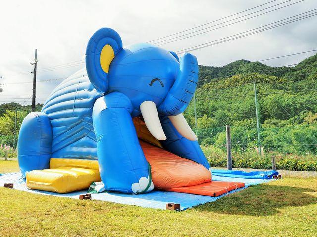 子供の遊び場_治部坂高原100万本のコスモス