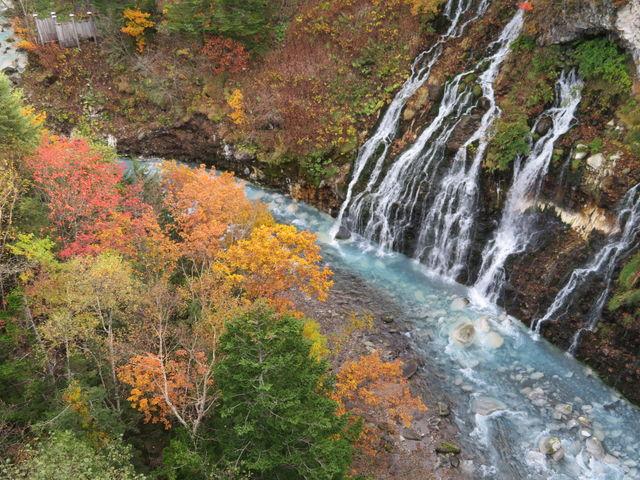 紅葉と滝の絶妙な組み合わせ_白ひげの滝