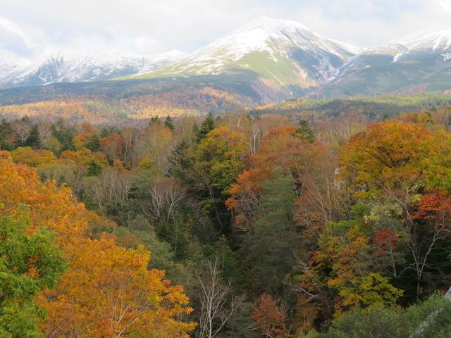 紅葉と冠雪した十勝岳_白ひげの滝