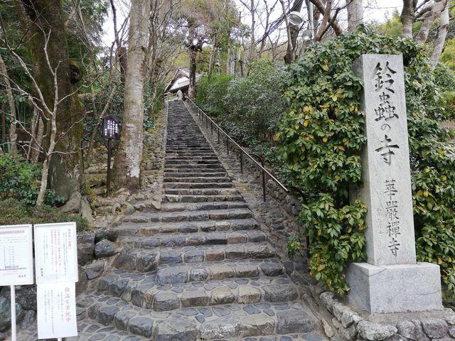 鈴虫寺♪_鈴虫寺(華厳寺)