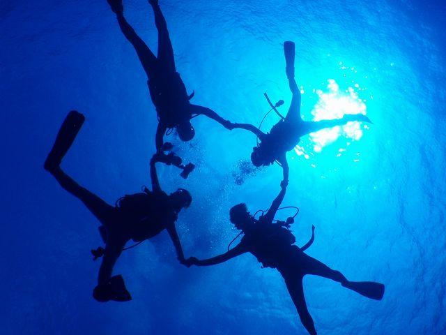 海の世界を覗いてみよう♪♪_ミスオーシャンダイビングサービス