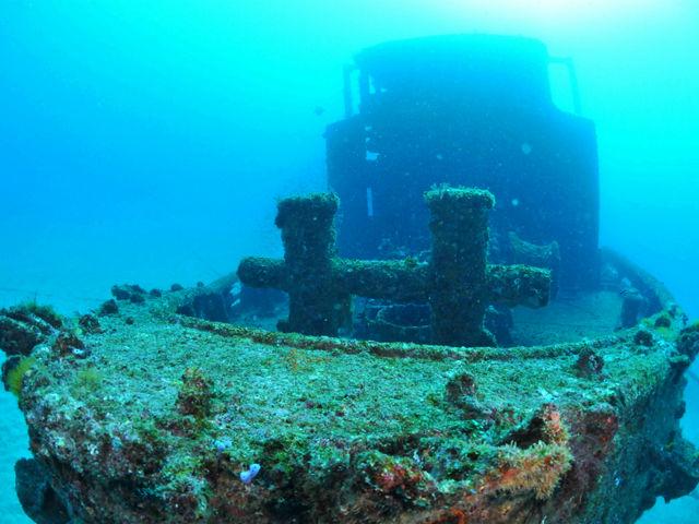 ライセンス取得後は、西日本一の沈船ポイントで潜りましょう!_ミスオーシャンダイビングサービス