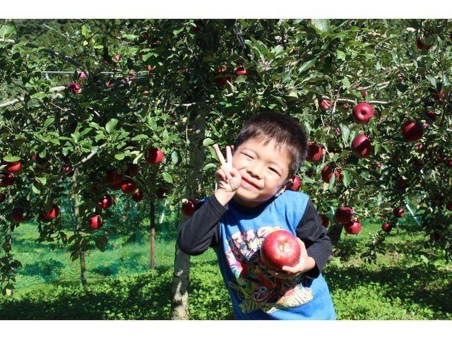お子様も大満足!_田村りんご園