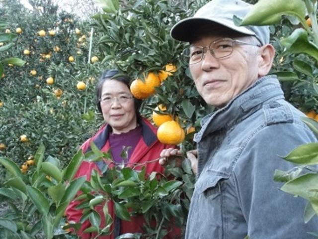 私たちが栽培しています。 皆さんが楽しんでいただけるよう、精一杯接待させていただきます。_あかざと園
