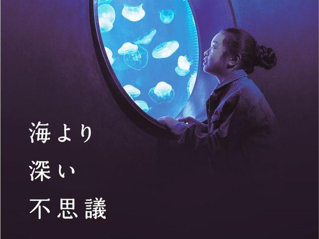 クラゲのいやし_仙台うみの杜水族館