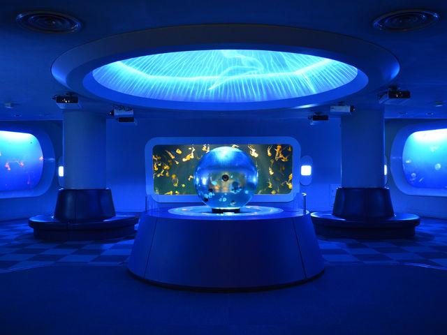 クラゲファンタジーホール_新江ノ島水族館