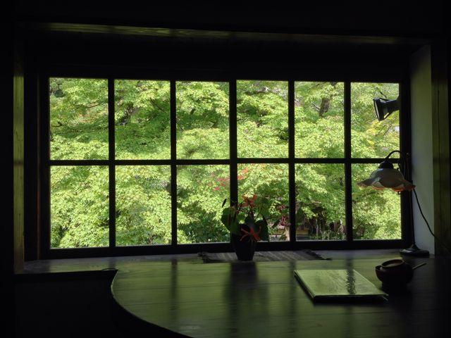 一面の碧紅葉、ここが軽井沢か京都と云われても遜色は微塵も無い抜群の雰囲気です_茶房 天井棧敷