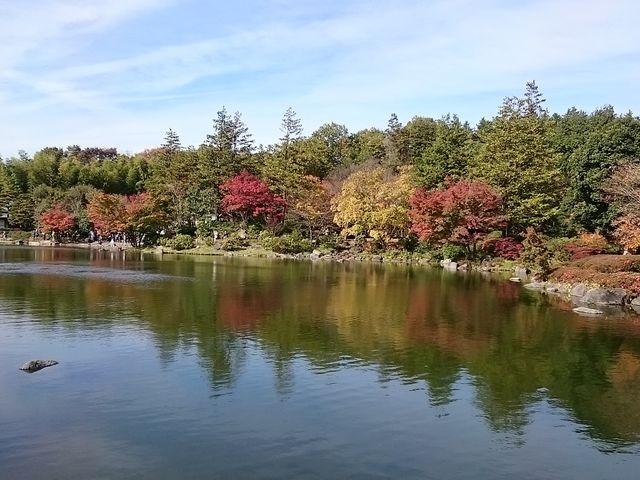 日本庭園2_国営昭和記念公園