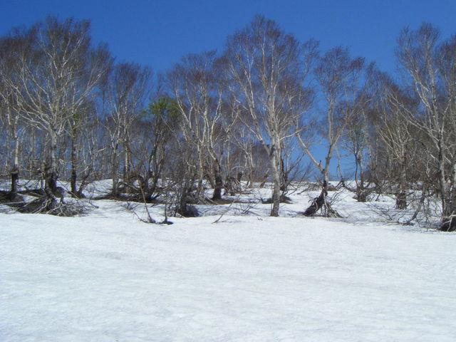 雪の中を登っていくと_雪中行軍遭難記念像