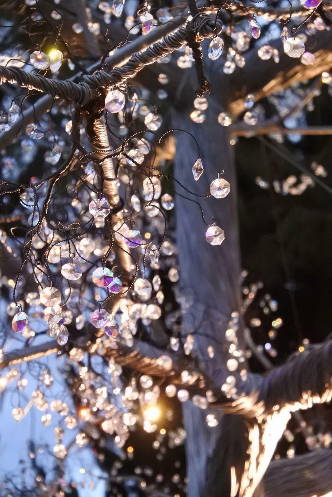箱根ガラスの森