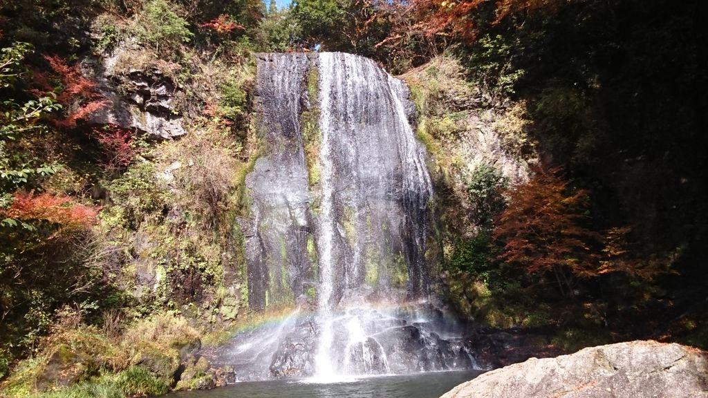ゆうすい自然の森(旧:遊水峡キャンプ場)