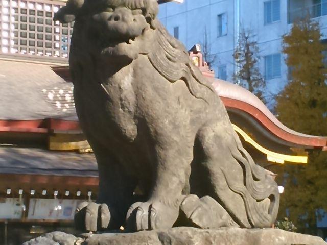 頭の丸い感じがとてもいい感じ。狛犬の中でも、好きな狛犬さん。_浅草神社(三社さま)
