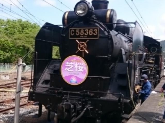 三峰口駅にて1_SLパレオエクスプレス