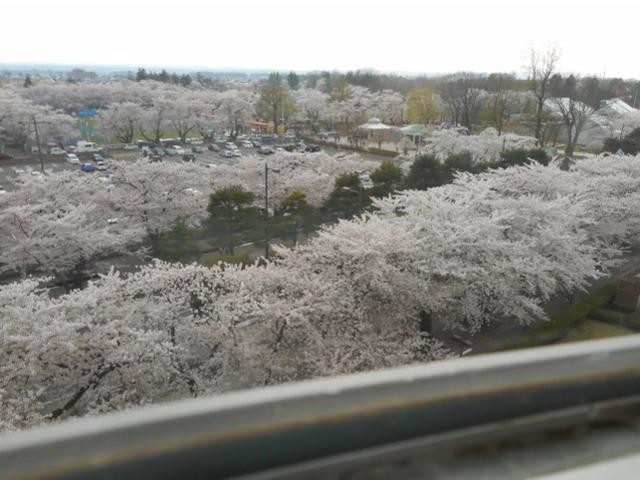 庁舎の展望室からの眺め_官庁街通り駒街道