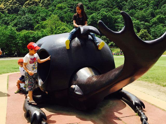 カブト虫の公園_ぎょぎょランド