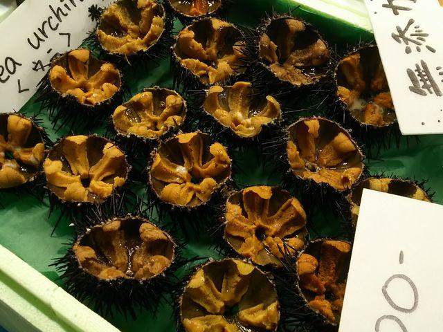 旬のウニが安い!うまい!_塩釜水産物仲卸市場