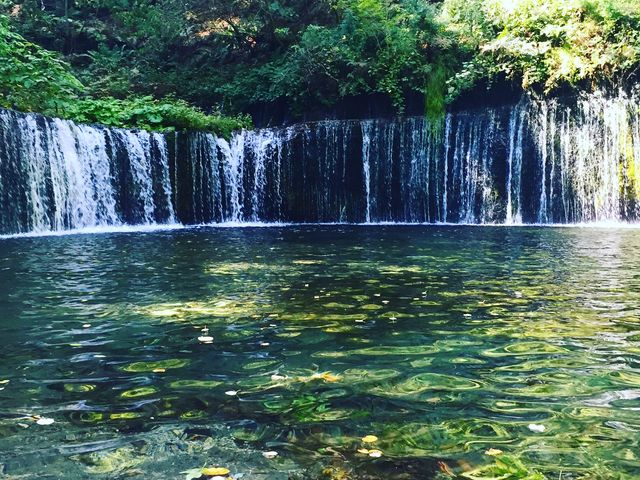 滝_白糸の滝