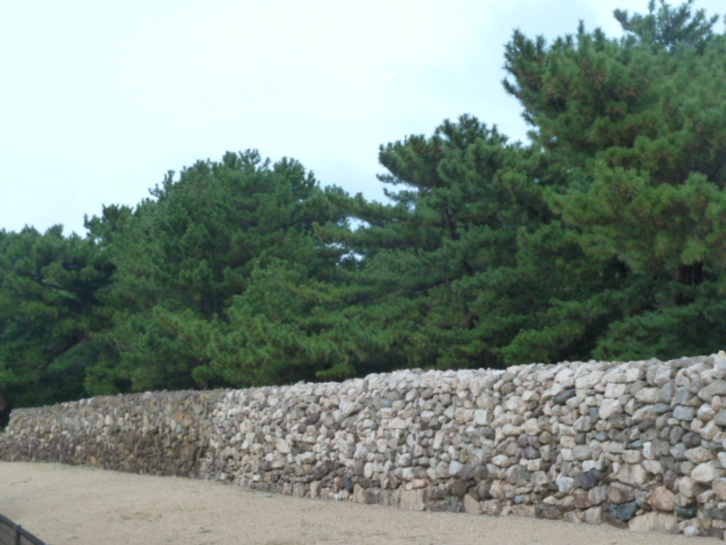 生の松原(長垂海岸)