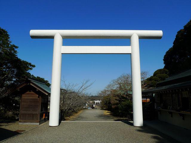 石の鳥居と桜並木_安房神社