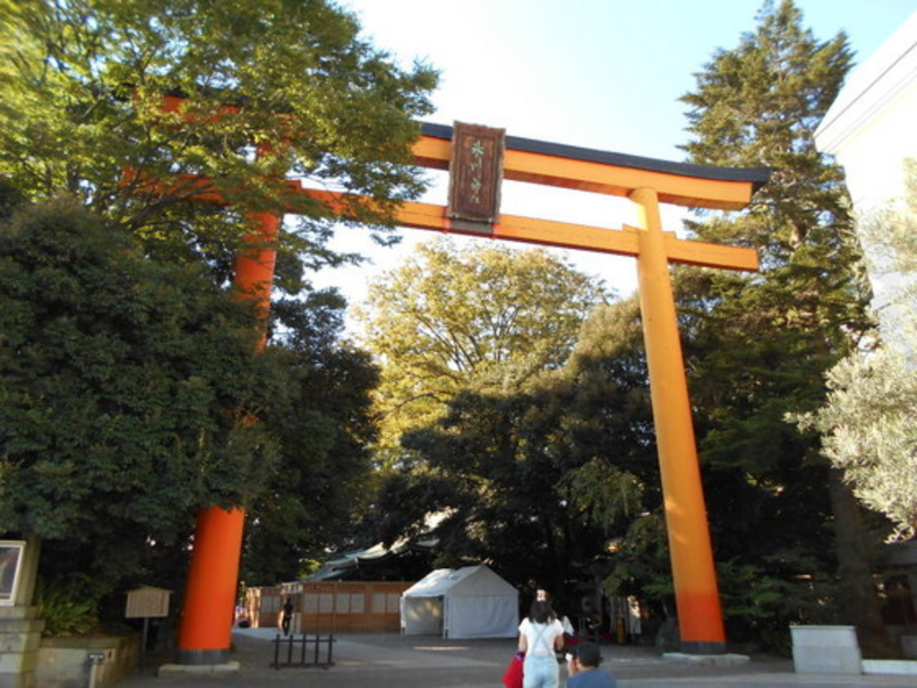170808_kawagoe川越氷川神社