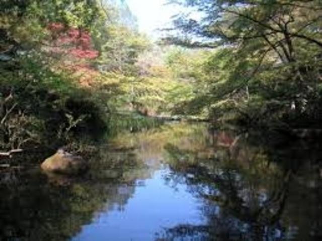見事な日本庭園_根津美術館