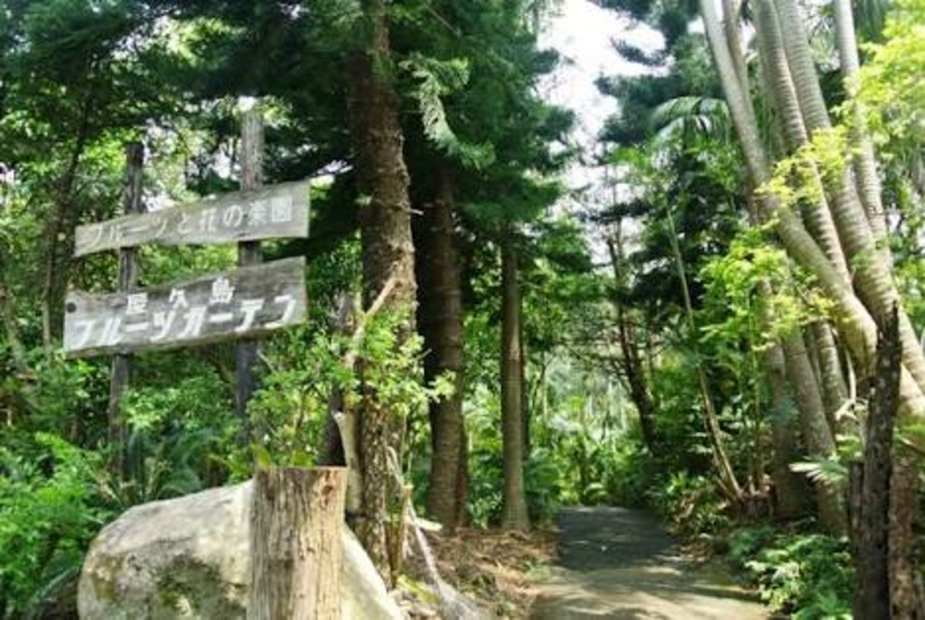 屋久島フルーツガーデン(パパイヤの里)