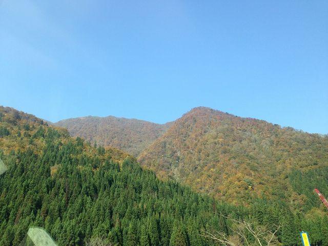 山あいの紅葉_九頭竜峡