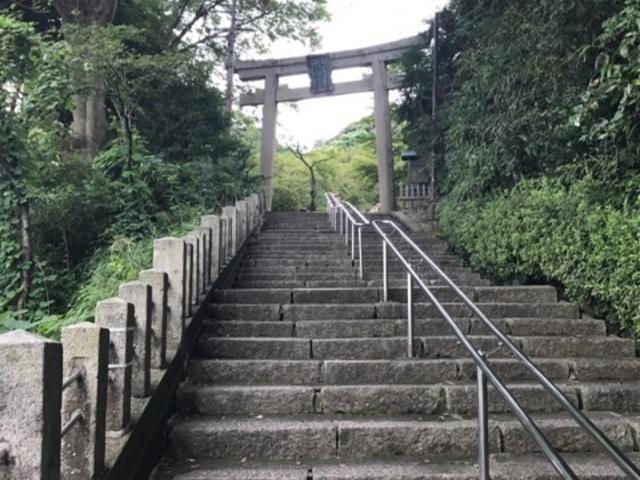 鳥居_金崎宮