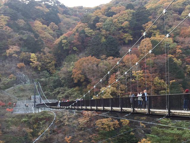 紅葉が綺麗でした!_鬼怒楯岩大吊橋